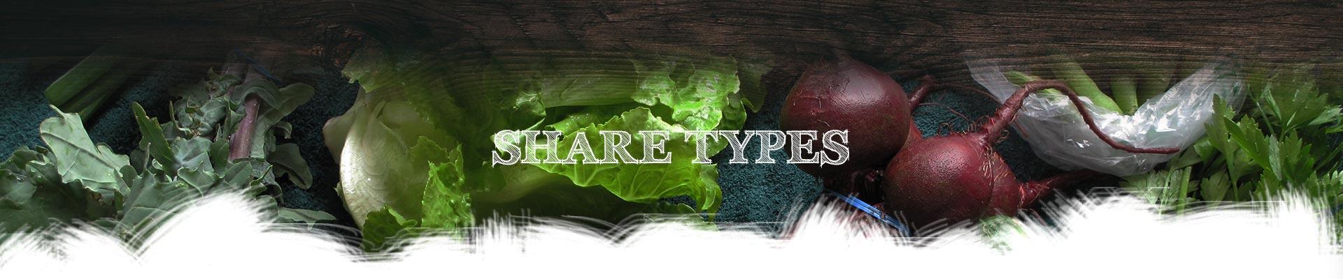 sharetypes