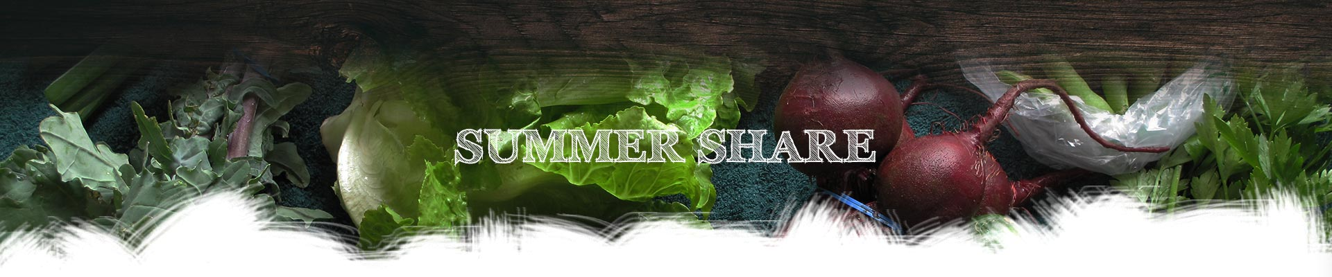 summershare
