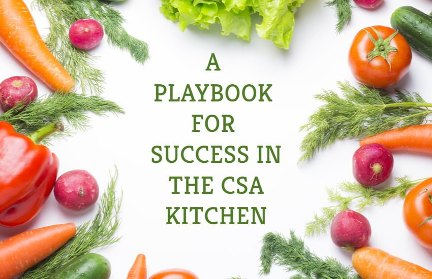 CSA Playbook