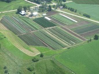farm_4
